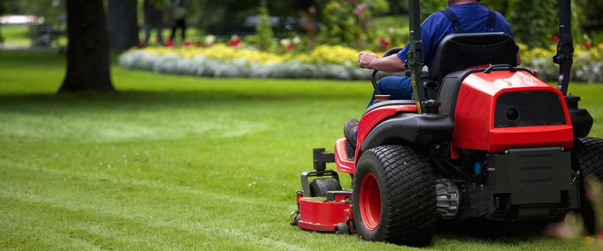 Garden Maintenance in Timperley
