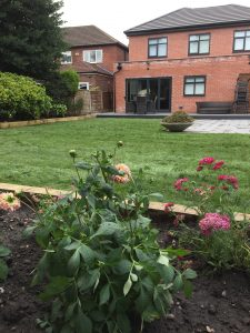 commercial landscaper in Hale